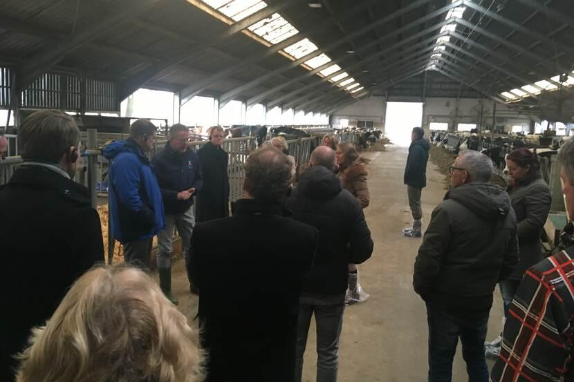 Eind januari hebben landbouworganisatie LNV, gemeenten, waterschap en de provincie de start van het IBP-proces in de Achterhoek gemarkeerd met een rondleiding bij melkveeproefbedrijf De Marke. Daar onderzoekt en demonstreert Wageningen University & Research een schone en rendabele melkveehouderij.